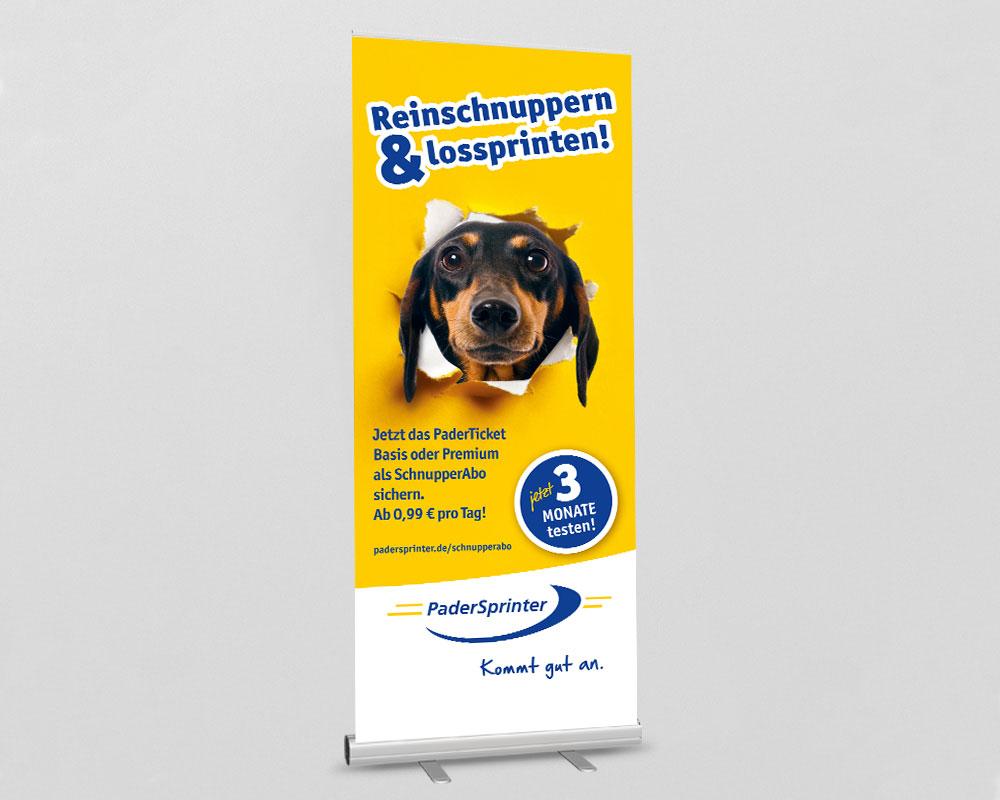 SILBERWEISS – PaderSprinter Schnupperabo